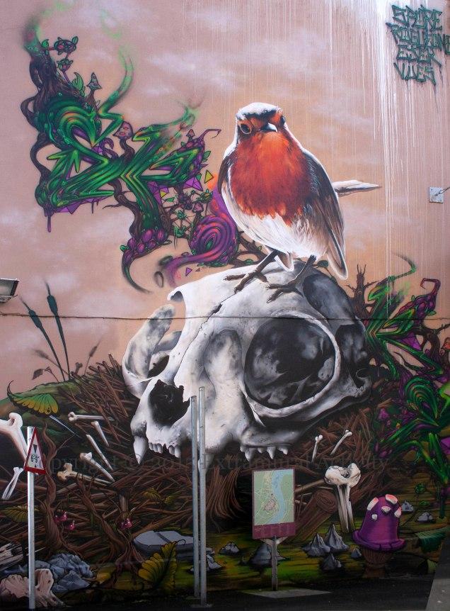 2015-08-07 RobinSkull+