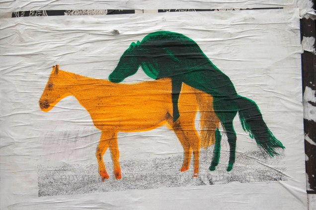 03078 2015-10-03 Horses Copulating+