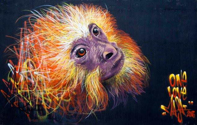 03046 2015-09-23 Masai CNB15 Monkey+