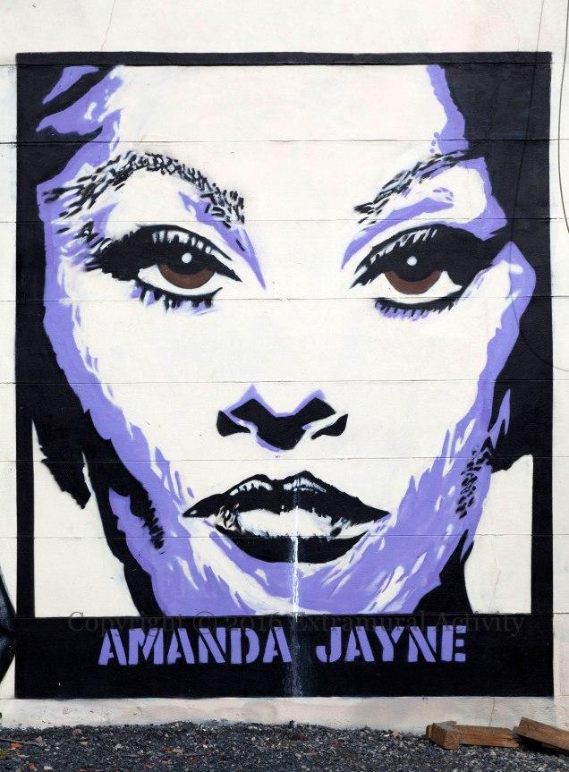 03317 2016-03-06 Amanda Jayne Face+