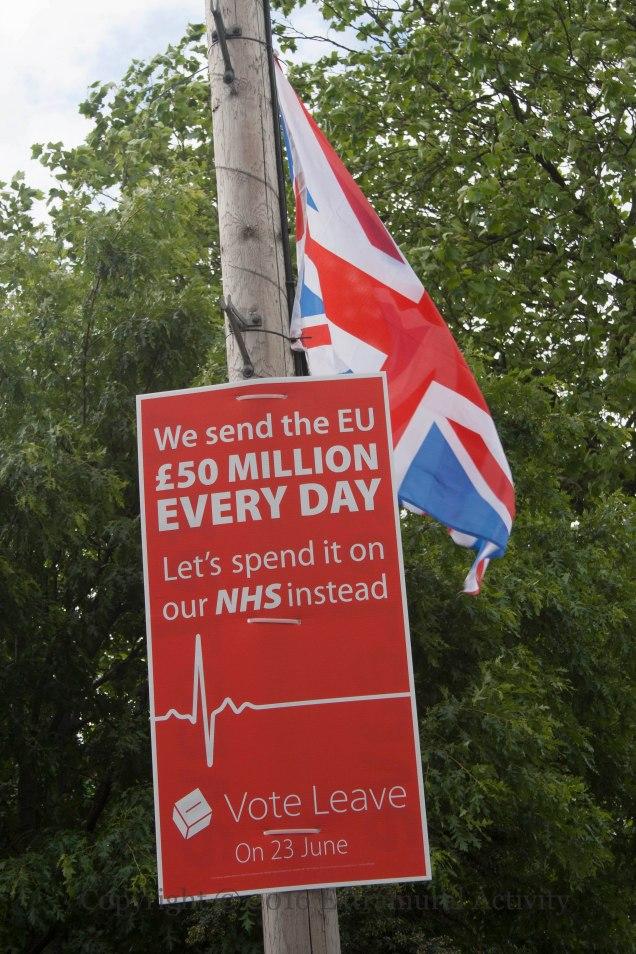 03541 2016-06-17 Vote Leave 50 Million+