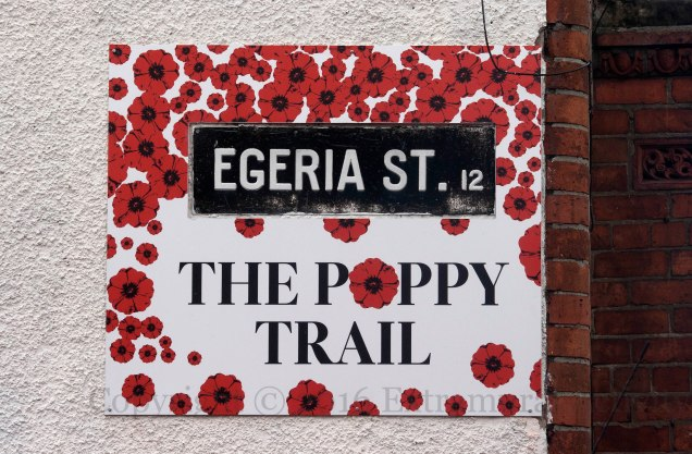 03692 2016-07-31 The Poppy Trail+