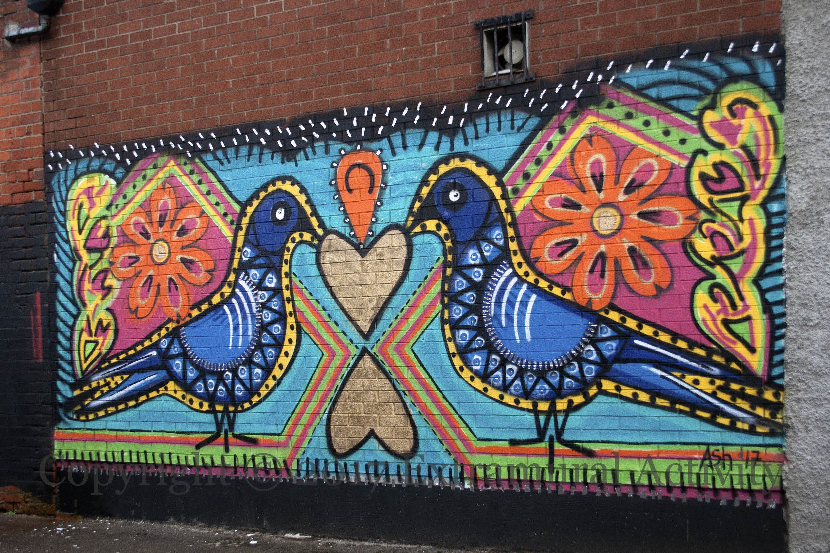 Graffiti wall activity - 04368 2017 08 08 Ash Birds